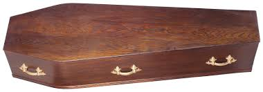 wooden coffin how to make your own six sided coffin synonym