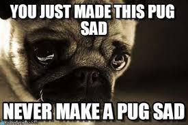 Sad Pug Meme - you just made this pug sad pug meme on memegen