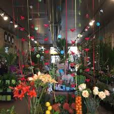 flower shops in chicago a new leaf 48 photos 92 reviews florists 1818 n st