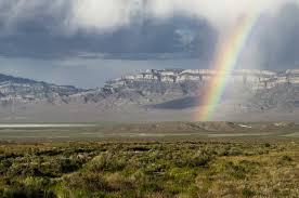 strategic habitat conservation