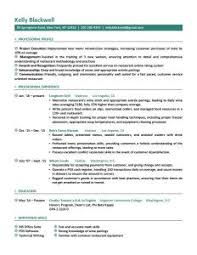 It Resumes Examples by Free Professional Resume Examples