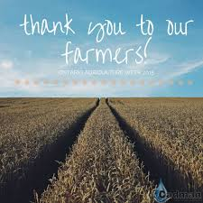 this thanksgiving celebrate ontario agriculture week by visiting