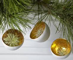 give living ornaments by flora grubb wantist