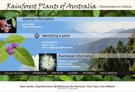 Plant Adaptation In Tropical Rainforest Rainforest Plants Of Australia U2013 Interactive Identification Key