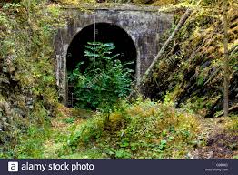 Maryland forest images Abandoned right of way of the western maryland railway tunnel in jpg