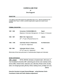 Sample Resume For Financial Controller Hotel Cost Controller Resume Virtren Com