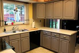 Painting Existing Kitchen Cabinets Kitchen Awesome Home Design - Kitchen cabinet repainting