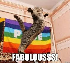 Meme Generator Cat - fabulous cat weknowmemes generator