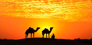 thar desert location thar desert rajasthan sunrise sunset times