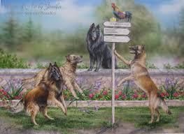 belgian sheepdog jewelry belgian breeds art for animal lovers