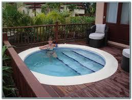 emejing small plunge pool designs ideas interior design ideas