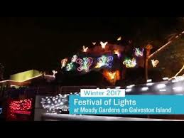 the lights festival houston 2017 pretty design moody gardens festival of lights contemporary ideas at