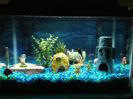fish tank decorations a simple guide aquariphiles aquarium