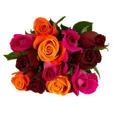 roses order online u0026 pick up at heb