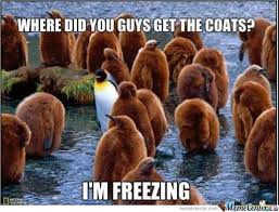 Freezing Cold Meme - i m freezing by 029946 meme center