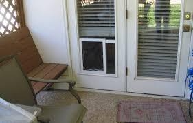 Interior Door Transom by Door Hale Pet Doors San Antonio Pet Door Electric Dogcat Fence