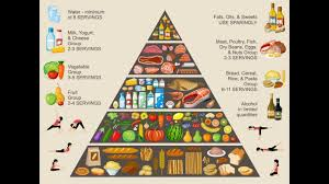 food pyramid eating healthy lifestyle youtube