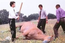 Beating A Dead Horse Meme - office space dead horse beating memes imgflip