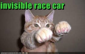 Invisible Cat Meme - community post the 17 best invisible cat pictures cars the o