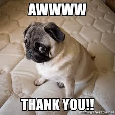 Puppy Face Meme - awwww thank you sadd puppy face meme generator