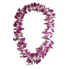 Graduation Leis Graduation Leis Albuquerque Archives Peoples Flowers