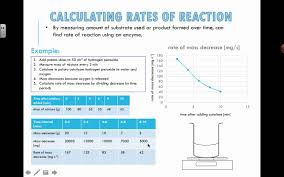 calculating rates of reaction 2016 ib biology youtube