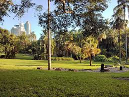 Botanical Gardens Brisbane Cafe 20 Must Visit Attractions In Brisbane Australia