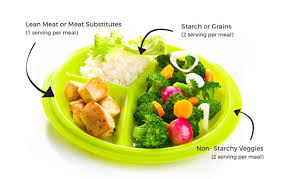 portion control plates and bowls healthy kids portion plate