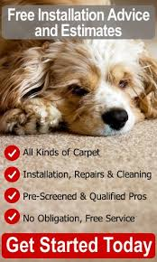Free Estimate Carpet Installation by Carpet Installation Cost Compare Installation Estimates Price