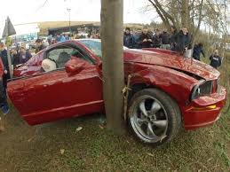 pictures of mustangs do mustangs always seem to crash at cars coffee events