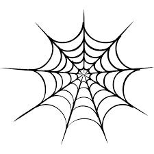 drawn spider web sticker pencil and in color drawn spider web