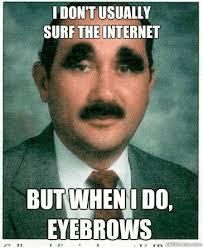 Bushy Eyebrows Meme - nice bushy eyebrows meme funniest memes this blog rules 80