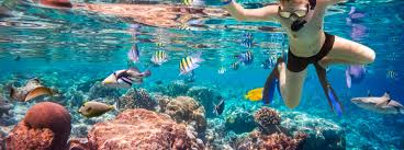 Alaska Snorkeling images Best places to visit in alaska things to do tripifini jpg