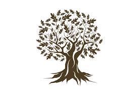 vector oak tree silhouette objects creative market