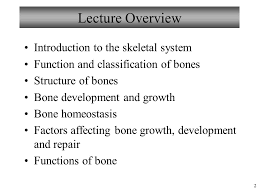Human Anatomy And Physiology Marieb Hoehn 1 Chapter 6 Bones And Skeletal Tissue Lecture 13 Figure 1998