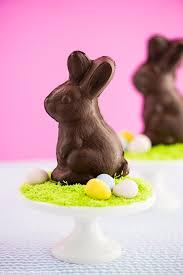 bunnies for easter chocolate bunny