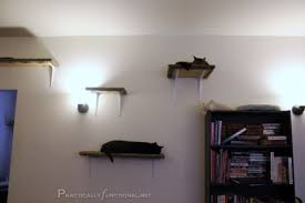 How To Make Wall Shelves Carpet Covered Cat Climbing Shelves