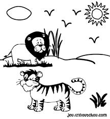 coloriage bã bã tigre imprimer