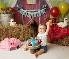 barnyard birthday banner 1st birthday boy barnyard baby