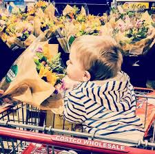 my top 10 favorite costco products to buy u2014 first thyme mom