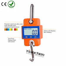 china scale crane scale weighing scale supplier hangzhou