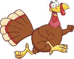 burn calories before dinner on thanksgiving at annual csi turkey trot