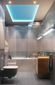 Bathroom Ceiling Ideas Modern Bright Guest Bathroom Design Ideas Below Luminous Tray