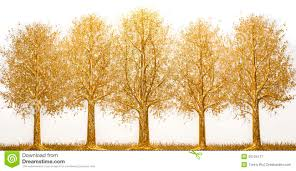 gold tree stock photo image 55124177