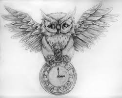 grey owl and pocket watch tattoos sketch photos pictures and