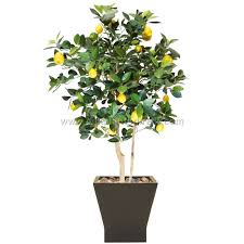artificial lemon trees silk trees faux lemon tree lemon