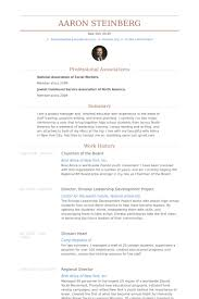 Work Experience In Resume Sample by Chairman Of The Board Resume Samples Visualcv Resume Samples