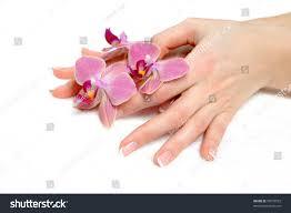 beautiful hand perfect nail french manicure stock photo 70570555
