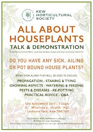 House Plants Diseases - all about houseplants kew tw9 community information