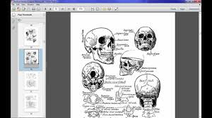 shortcut secrets of figure drawing review youtube